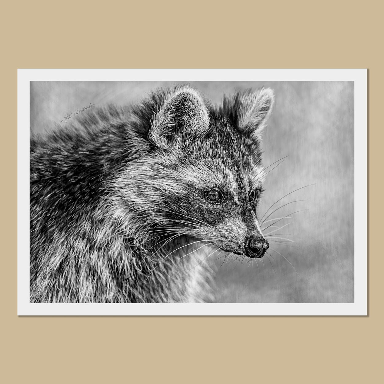 Raccoon Art Prints - The Thriving Wild