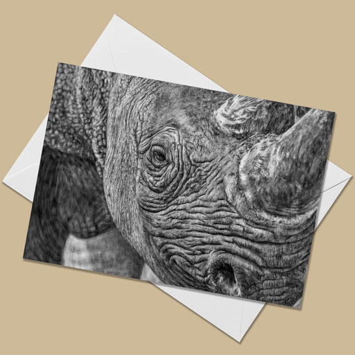 Rhino Greeting Card - The Thriving Wild