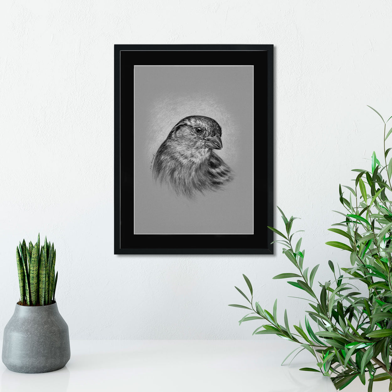 Sparrow in Frame on Wall - The Thriving Wild