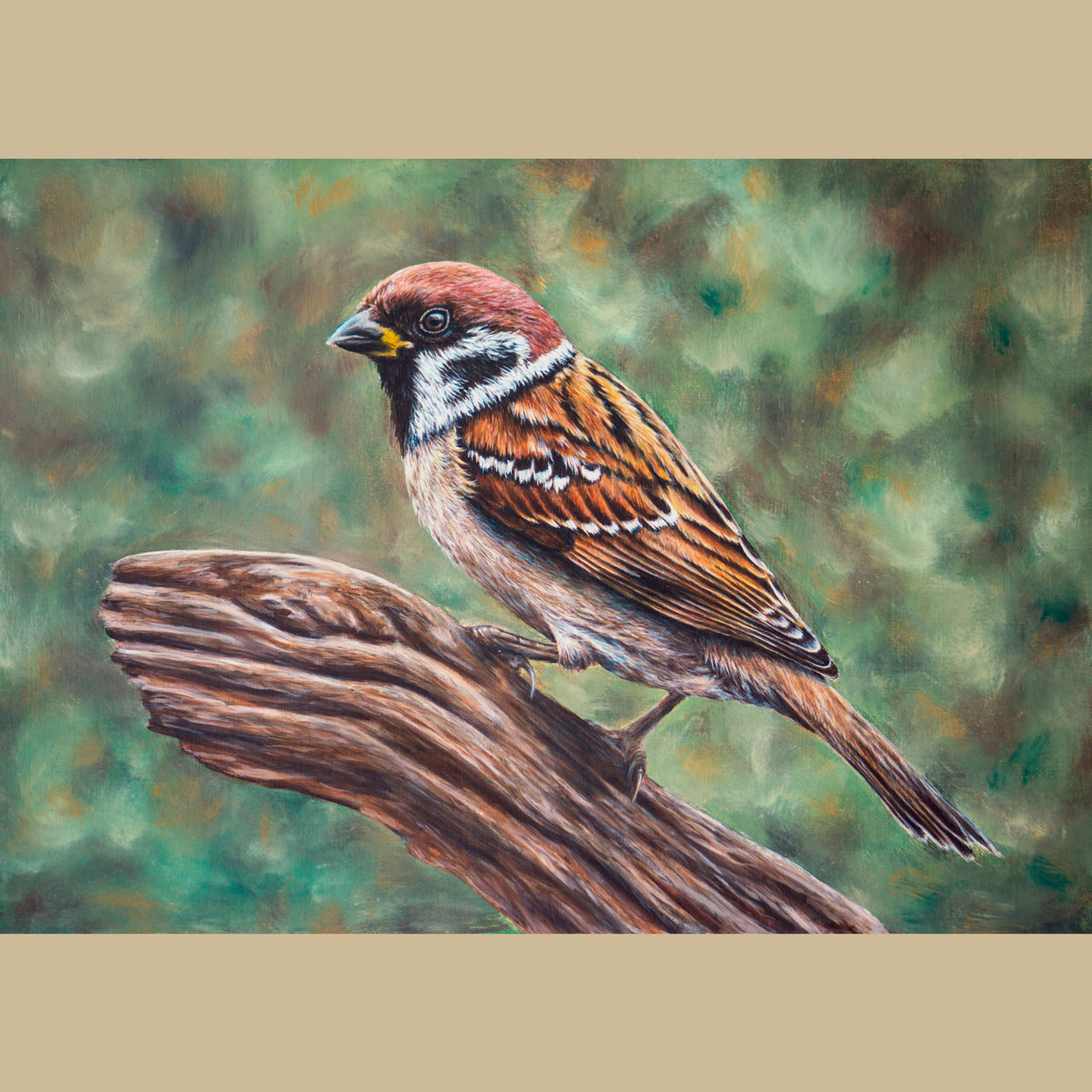 Tree Sparrow Original Painting - Passer Montanus - Jill Dimond - The Thriving Wild