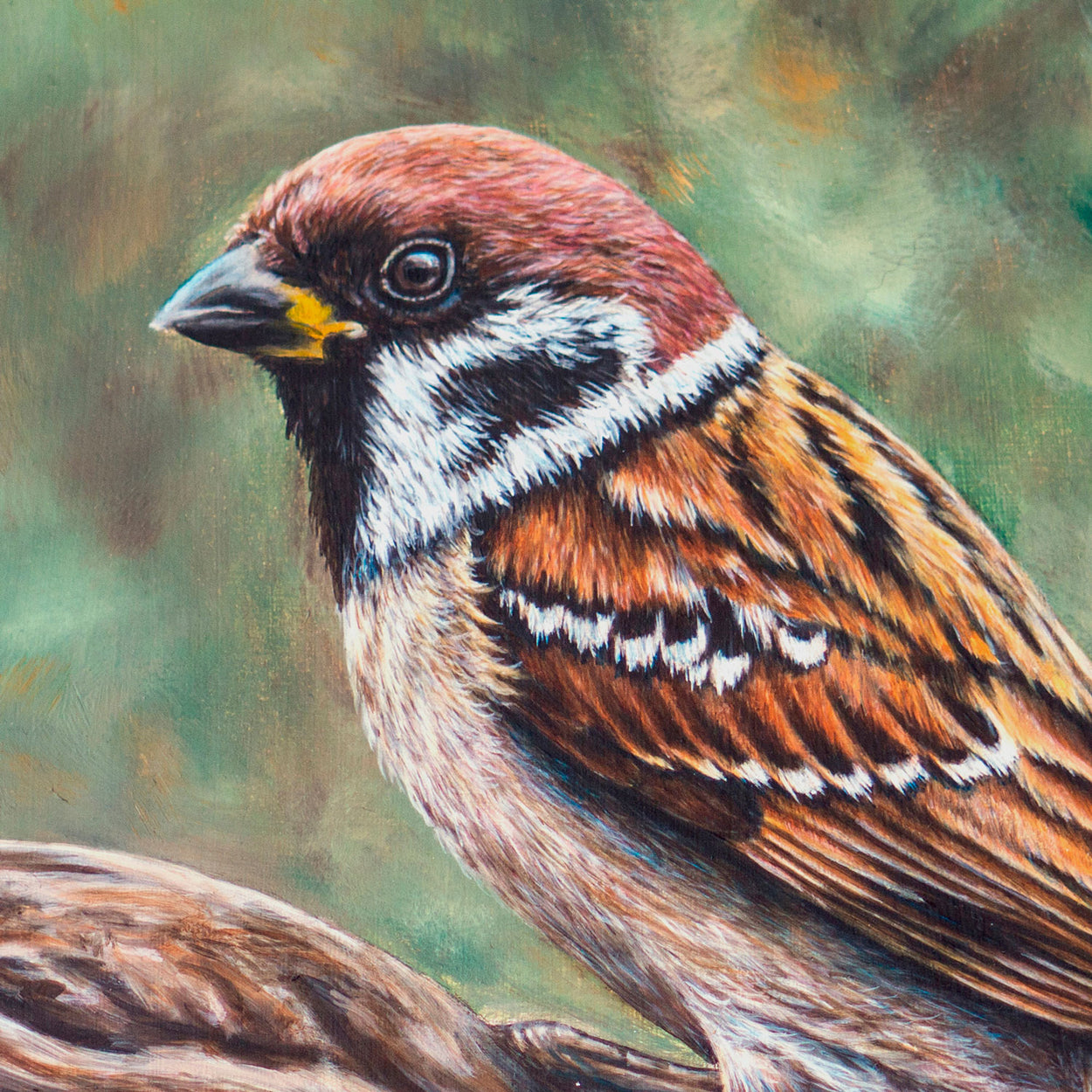 Tree Sparrow Painting Close-up 1 - The Thriving Wild