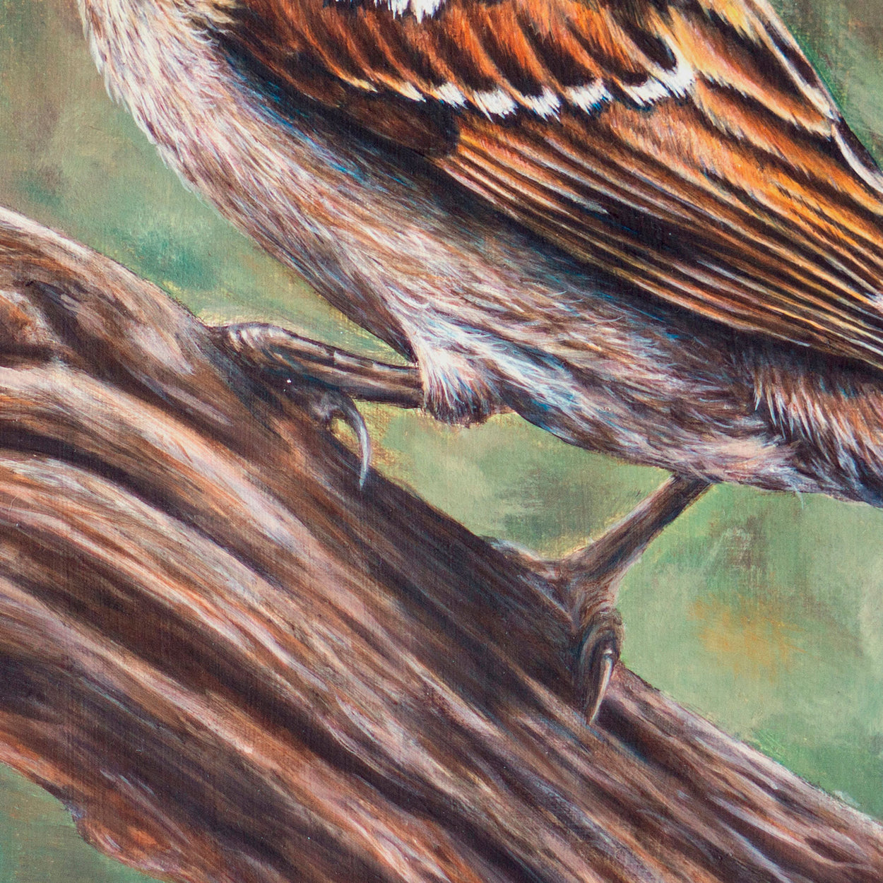 Tree Sparrow Painting Close-up 2 - The Thriving Wild