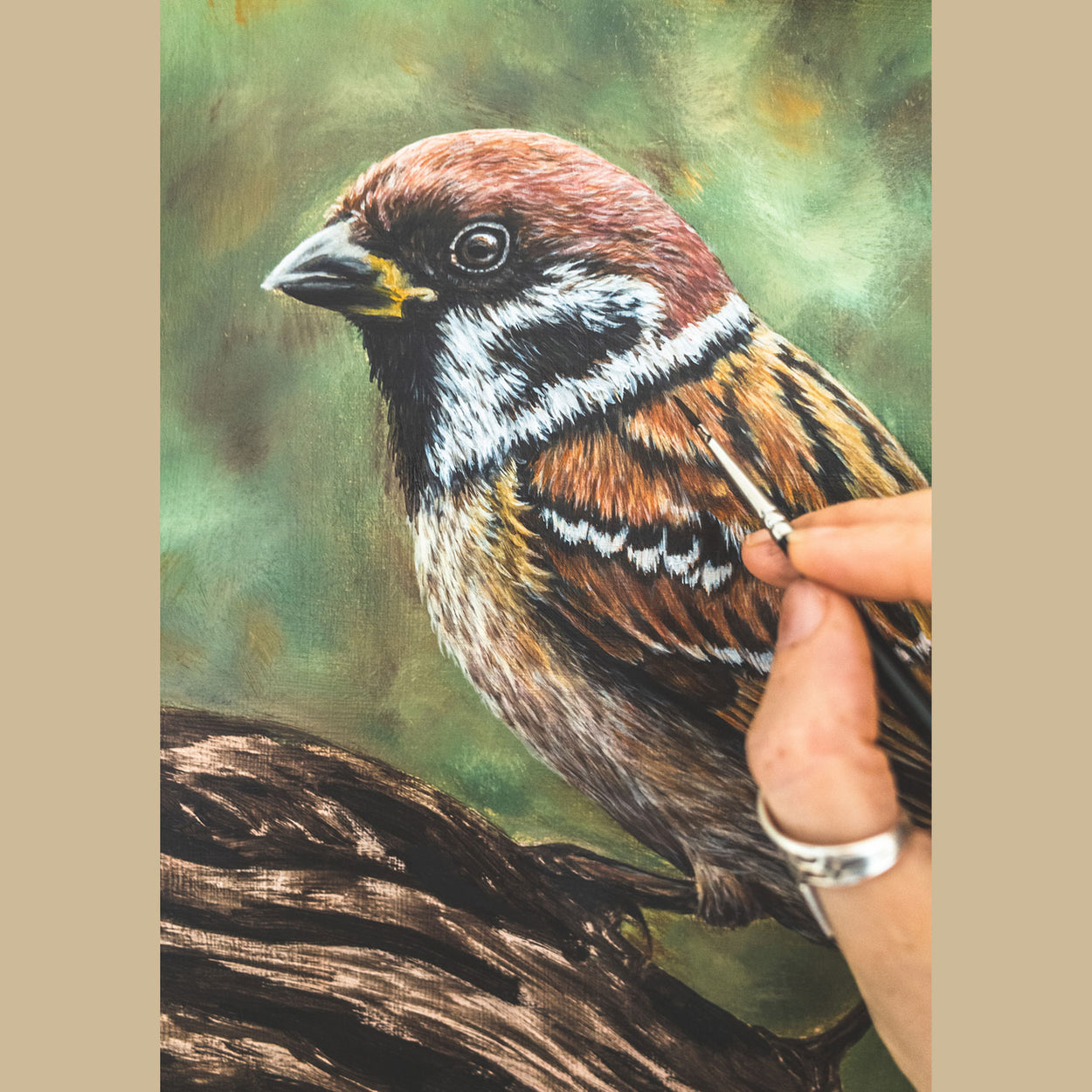Tree Sparrow Painting in Progress - Jill Dimond - The Thriving Wild