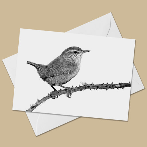 Wren Greeting Card - The Thriving Wild