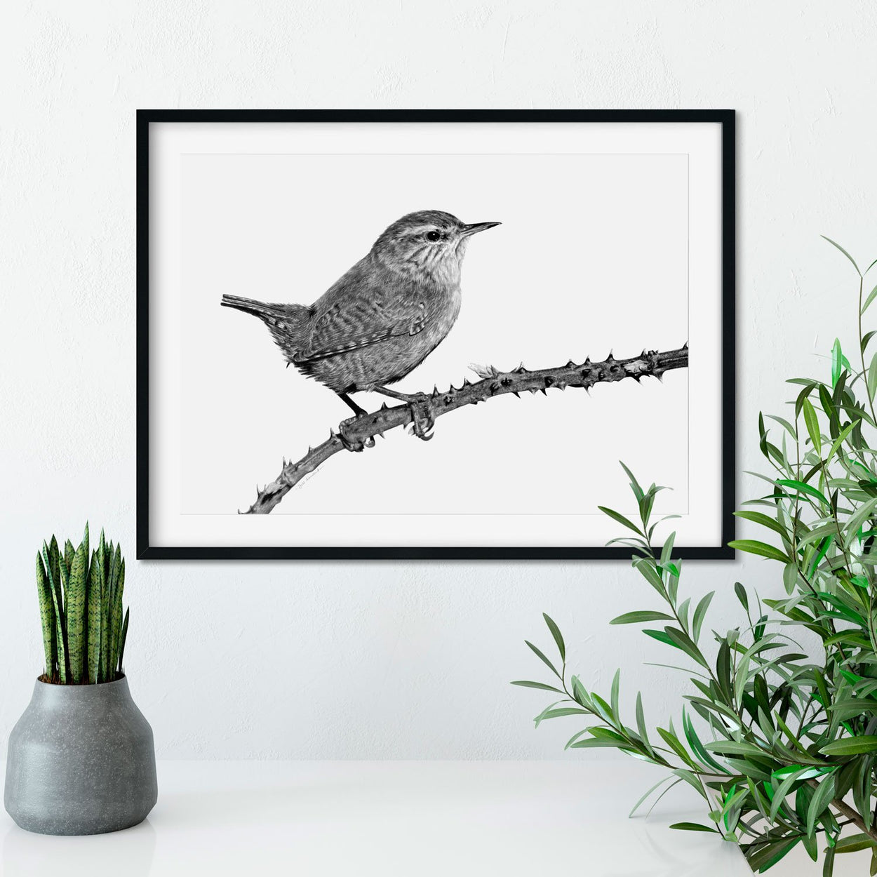 Wren Bird Drawing on Wall - The Thriving Wild
