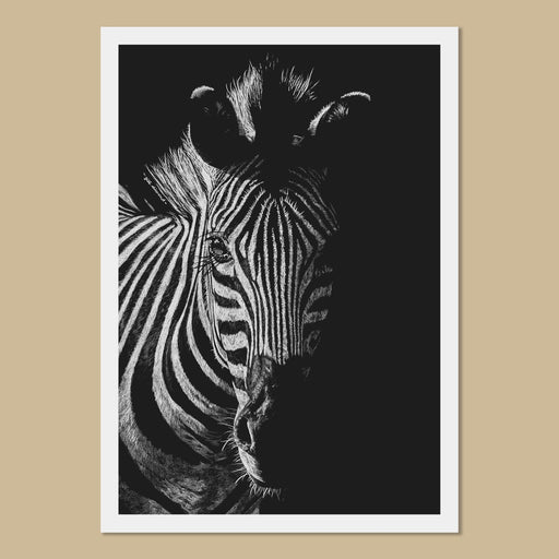 Zoe the Zebra Art Prints - The Thriving Wild