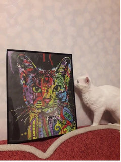 AbstractCat