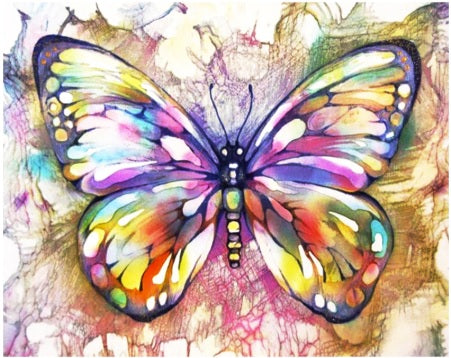 Abstract Colourful Butterfly