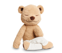 Load image into Gallery viewer, Meddy Teddy