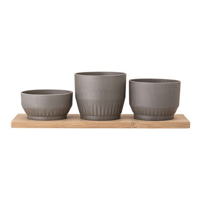 Set of Bamboo Planters