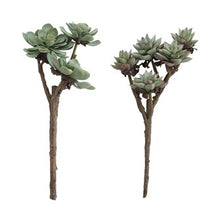Load image into Gallery viewer, Succulent Branch
