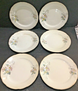 "SET OF (8) ANTIQUE T&R BOOTE IRONSTONE DAISY PATTERN 8"" SALAD PLATES (ENGLAND)"