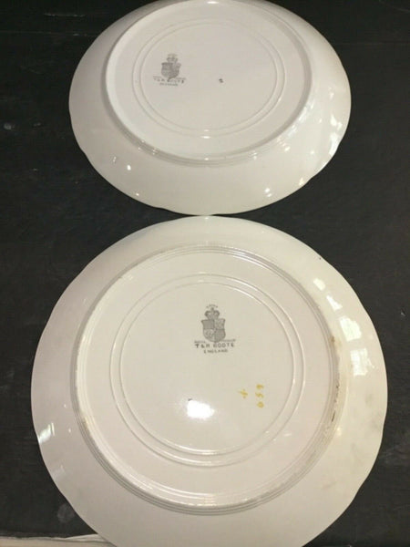 SET OF (2) ANTIQUE T&R BOOTE IRONSTONE DAISY PATTERN DINNER PLATES (ENGLAND)