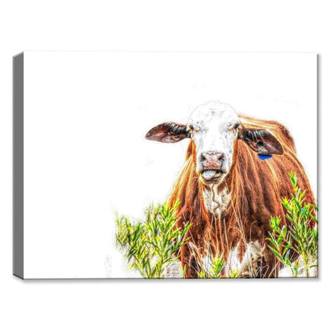 Cow with Tongue - Canvas Art-DooMahickeys