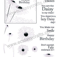 Creative Expressions - Clear Stamps - Daisy Corner