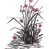 Frog's Whiskers Stamps - Rocks & Flowers
