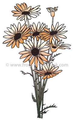 Frog's Whiskers Stamps - Daisy Bouquet Cling Mount Stamp