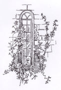 "Clear Stamps ""Window"""