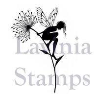 Lavinia Stamps - Seeing is Believing