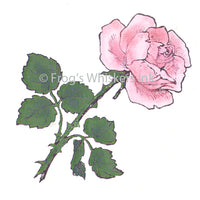 Frog's Whiskers Stamps - Favourite Rose