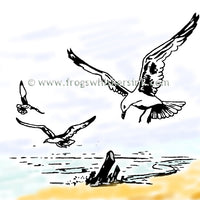 Frog's Whiskers Stamps - Sea Gulls