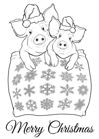 Pigs in Blankets Postcard