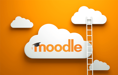 Moodle Consultation
