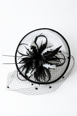 Feather & Mesh Fascinator