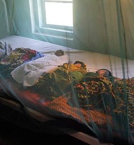2 Mosquito Nets for a Family