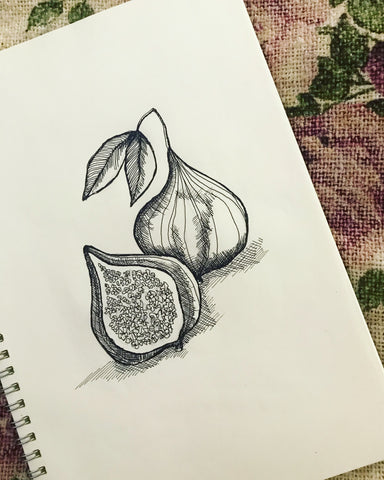Hand drawn figs by Chelsey Wilson