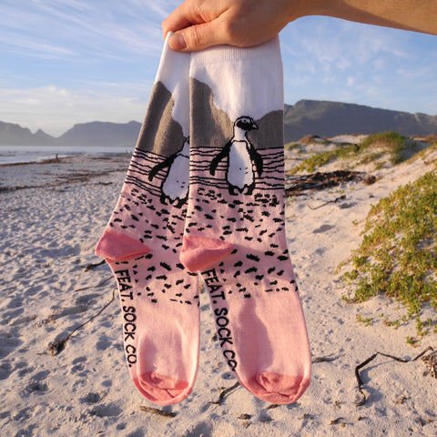 Ladies' Pink Penguin socks, designed and made in Cape Town, South Africa
