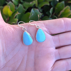 The Pinellas Turquoise Earrings