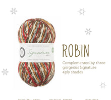 Load image into Gallery viewer, Robin Christmas Socks