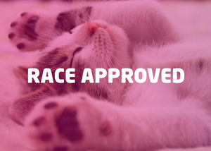 RACE Approved Bundle