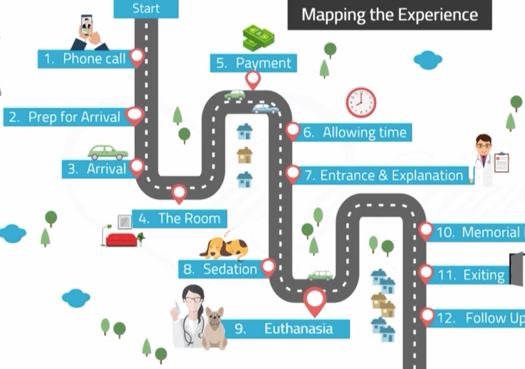 Mapping the Euthanasia Experience (Part 3)