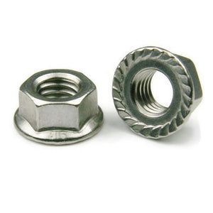 Buy M6 Flange Nut online from DIY-India.com