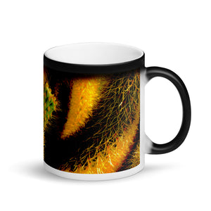 Cacti 11oz Matte Black Magic Coffee Mug