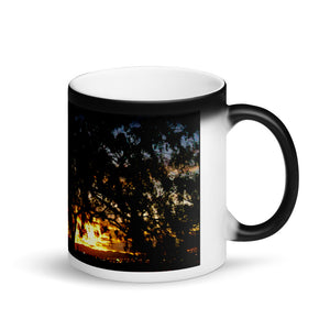 Sunset Tree 11oz Matte Coffee Mug