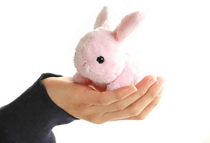 What figure do you see on the moon in your country? - Kawaii Rabbit Plush