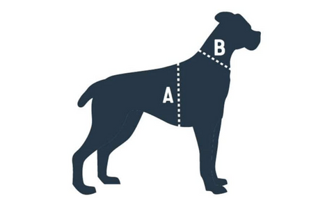 Deluxe Car Safety Harness_size guide