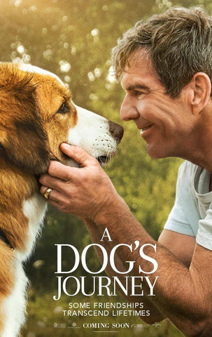 dog movies a dog's journey