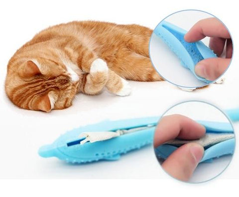 cat dental toy with catnip