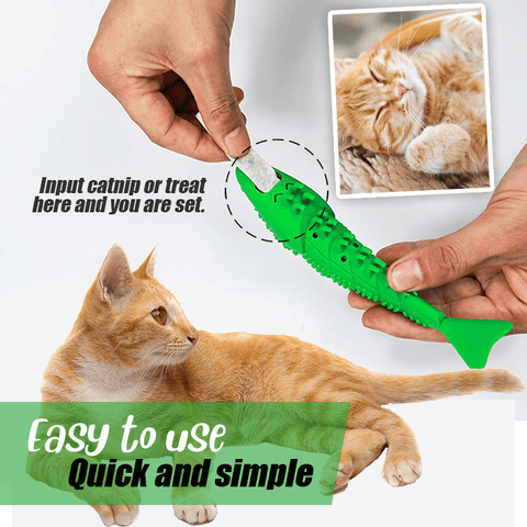 catnip toothbrush toy