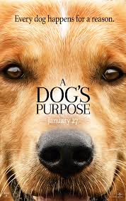 a movie for dog lovers, a dog's purpose