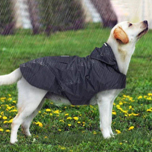 Dog Hoodie Raincoat w Reflectives-dog coat-Baxter & Bella