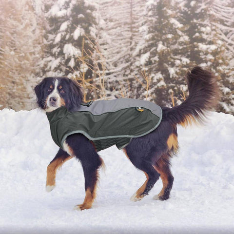 Reflective Waterproof Dog Coat