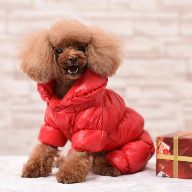Winter Overall Jacket for Small Dogs-dog coat-Baxter & Bella