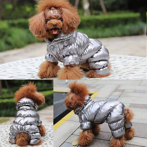 fancy small dog overall jacket