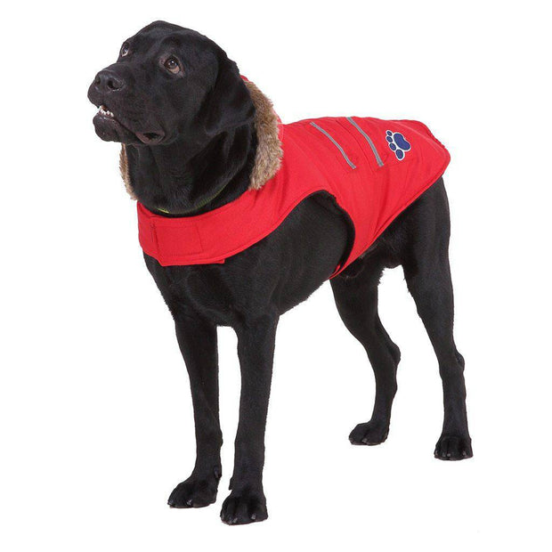 Waterproof Dog Winter coat with Hood for Small & Big Dogs-dog coat-Baxter & Bella