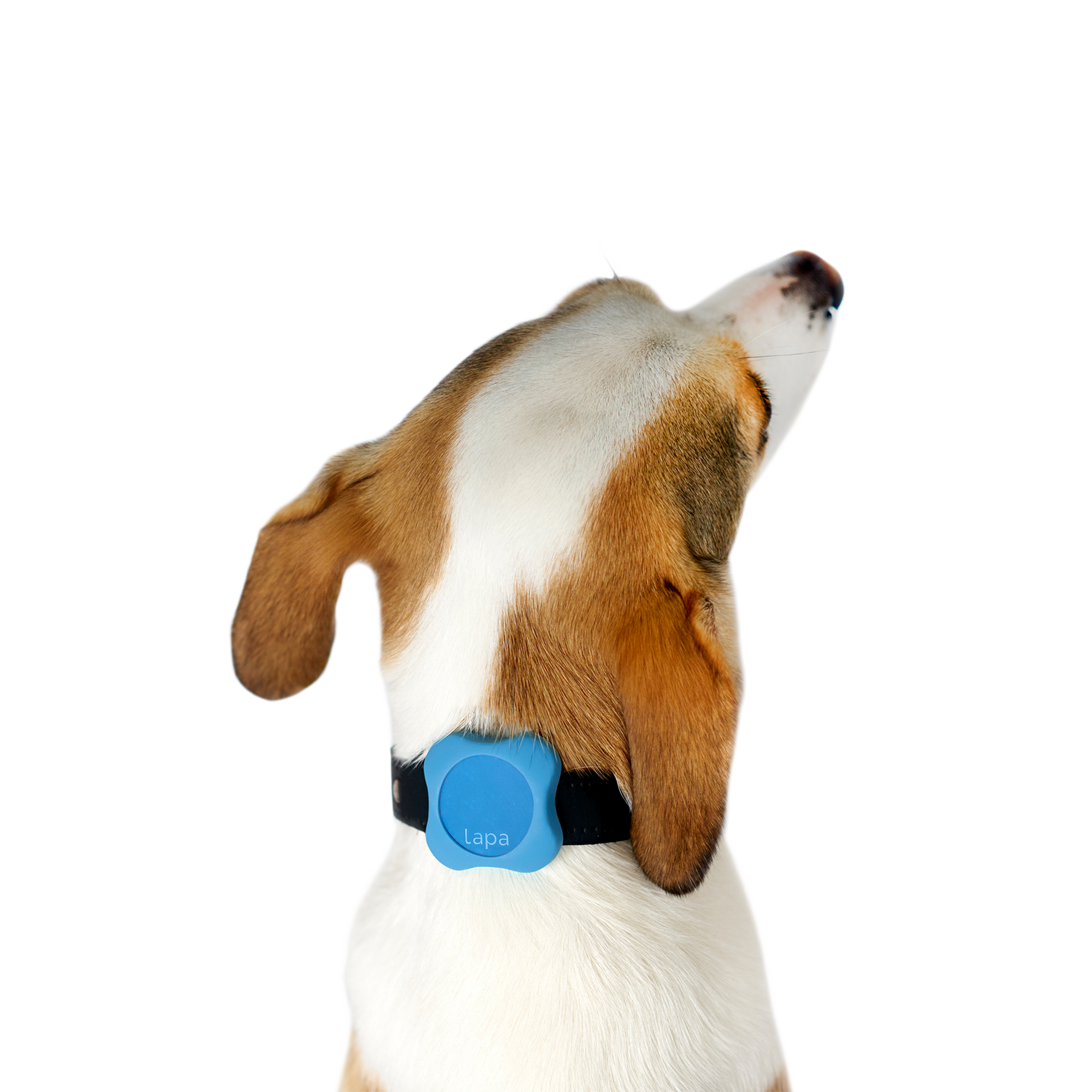 Lapa Bluetooth Tracker for Pets
